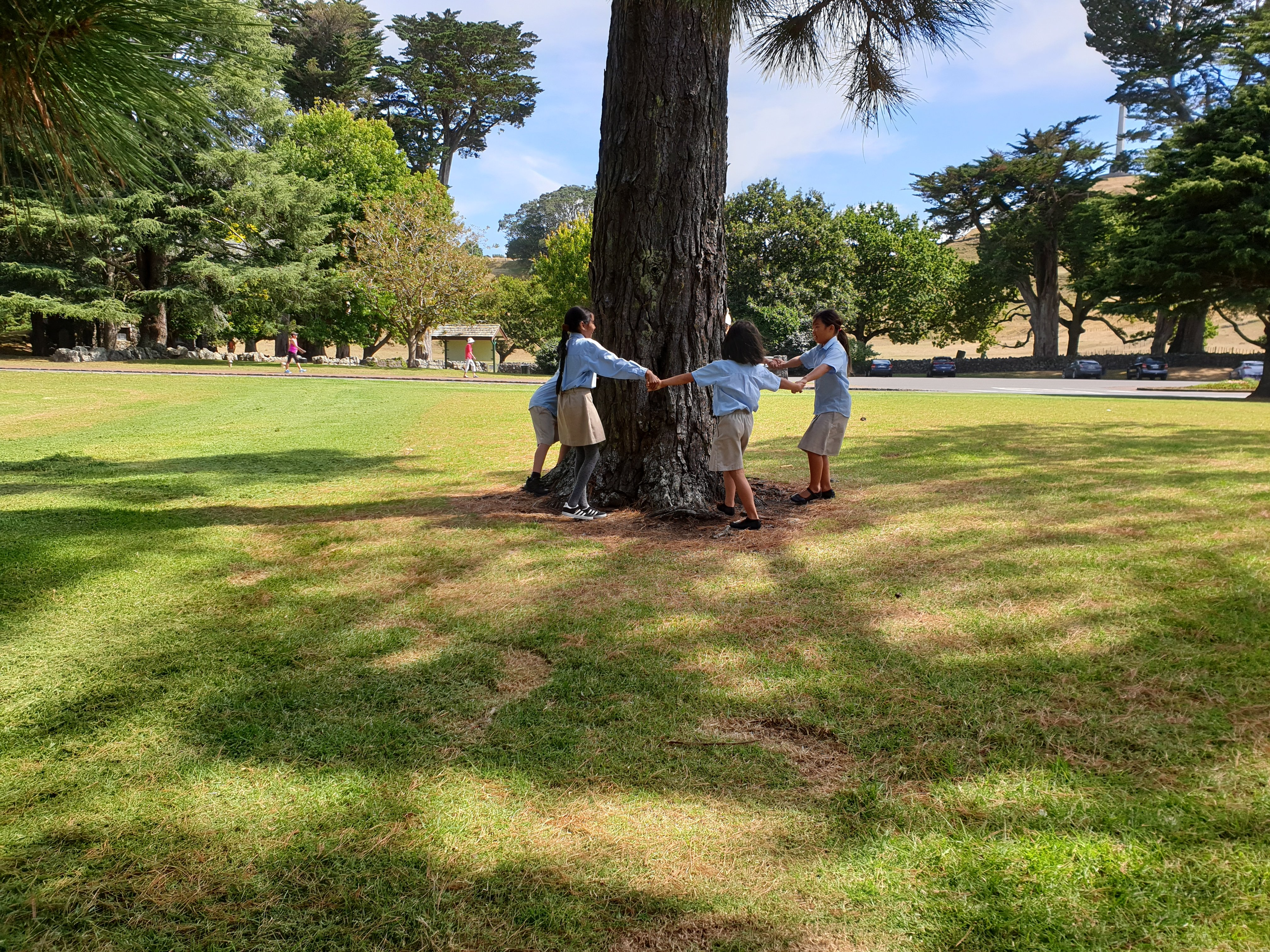 Cornwall Park Day Trip