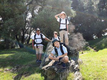 One Tree Hill Summit